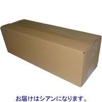 ハイパーマーケティング リサイクルトナーカートリッジ PR-L9800C-13タイプ (直送品)