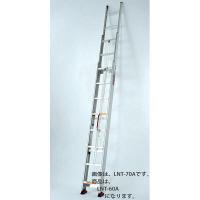 PiCa Corp(ピカコーポレイション) アルミ合金 サヤ管式3連はしご 599cm LNT-60A 1台 (直送品)
