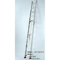 PiCa Corp(ピカコーポレイション) アルミ合金 サヤ管式3連はしご 703cm LNT-70A 1台 (直送品)