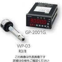 アルバック販売(ULVAC) ピラニ真空計GP-2001G/WP-03 GP-2001G/WP-03 1式 2-157-03 (直送品)