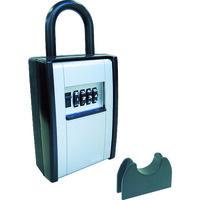 日本ロックサービス ABUS カードとカギの預かり箱 DS-KB-2 1個 445-1741(直送品)