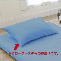 西川リビング カラーパレッド ピローケース 幅450×オクユキ650 ブルー (直送品)