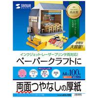 サンワサプライ インクジェットプリンタ用厚紙(大容量) JP-EM1NA4N-100 (直送品)