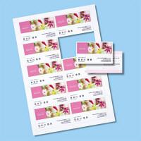 サンワサプライ インクジェット名刺カード・光沢 JP-MC13K-1 (直送品)