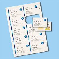 サンワサプライ マルチタイプまわりがきれいな名刺カード・標準(アイボリー) JP-MCCM01BG 5個 (直送品)
