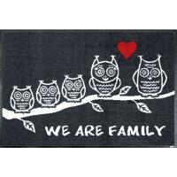 wash+dry薄型で丈夫な洗える玄関マット We are Family 50×75cm G023A 1枚 クリーンテックス・ジャパン (直送品)