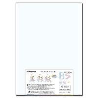 美彩紙 B5 50枚1セット(50枚入X5)ナー961(直送品)
