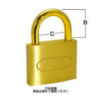 清水 SOL シリンダー錠 20mm 2500-20 1個 769-3982(直送品)