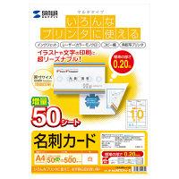 サンワサプライ マルチ名刺カード(白) JP-MCMT01N-5 1セット(2冊入) (直送品)