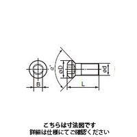 住友電工ハードメタル(SUMITOMO) 切削工具 部品 ネジ BHF0306R 1セット(10個入)(直送品)