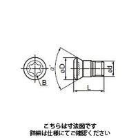 住友電工ハードメタル(SUMITOMO) 切削工具 部品 ネジ BFTG0513F 1セット(3個入)(直送品)