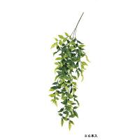 ベリーリーフバイン A-42011-053A 1箱(6本入) asca(アスカ) (直送品)