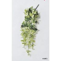 アイビーブッシュバイン A-42270-053A 1箱(6本入) asca(アスカ) (直送品)