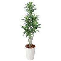 タカショー 人工観葉植物 ドラセナ  1.2m