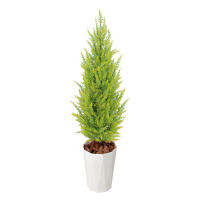 タカショー 人工観葉植物 ゴールドクレスト ライトグリーン 1.2m