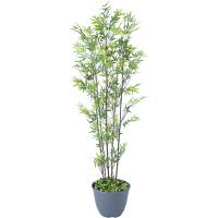 タカショー 人工観葉植物 黒竹 5本立  1.8m