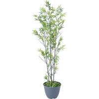 タカショー 人工観葉植物 黒竹 3本立  1.5m