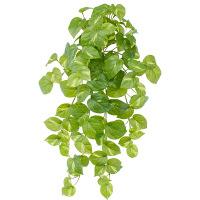 タカショー 人工観葉植物 ポトス  ハンギング 60cm 1セット(2本入 )
