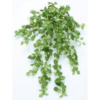 タカショー 人工観葉植物 ポトスブッシュ ハンギング 50cm 1セット(2本入 )