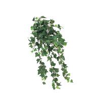 タカショー 人工観葉植物 アイビーブッシュグリーン ハンギング 50cm 1セット(2本入 )