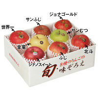 青森県産 りんご8種詰め合わせ (直送品)【予約販売】