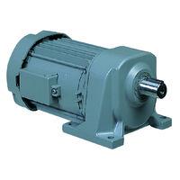 日立産機システム ギヤモータ CAシリーズ CA24-040-10 1台(直送品)