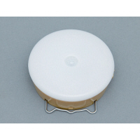 アイリスオーヤマ 乾電池式屋内センサーライト マルチタイプ シーリングライト BSL40MN-U (直送品)