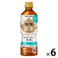 ポッカサッポロフード&ビバレッジ 知覧にっぽん紅茶 500ml 1セット(6本)