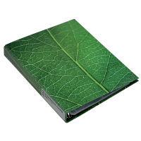 エトランジェ・ディ・コスタリカ A4名刺ファイル[GREEN]No2 GRNー19ー02 3冊 (直送品)