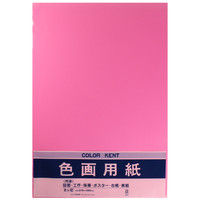 マルアイ 色画用紙 N832 もも 八つ切り 10枚入 PエーN83P 4パック (直送品)