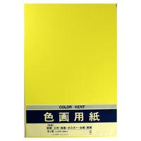 マルアイ 色画用紙 N853 レモン 八つ切り 10枚入 PエーN85LY 4パック (直送品)