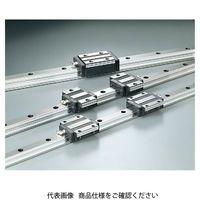 日本ベアリング スライドガイド SGL-TE形 SGL25TE2-700 1個(直送品)