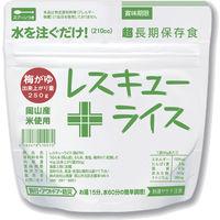 山貴屋 レスキューライス・梅がゆ40g 105407 1ケース(100袋入)(直送品)