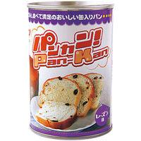 社会福祉法人童里夢 パンカン!レーズン100g 100502 1ケース(24缶入)(直送品)
