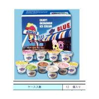 ブルーシールアイスクリーム ブルーシールアイスクリームギフトセット 1箱(12個入)(直送品)
