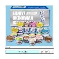 ブルーシールアイスクリーム ブルーシールアイスクリームギフトセット 1箱(24個入)(直送品)