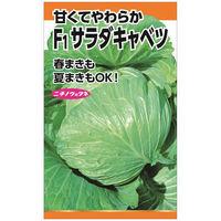 ニチノウのタネ F1サラダキャベツ 日本農産種苗 4960599114402 1セット(3袋入)(直送品)