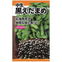 ニチノウのタネ 黒枝豆 日本農産種苗 4960599119704 1セット(5袋入)(直送品)