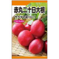 ニチノウのタネ 赤丸二十日大根(コメット) 日本農産種苗 4960599147202 1セット(5袋入)(直送品)