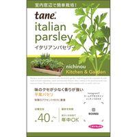 ニチノウのタネ K&Gイタリアンパセリー 日本農産種苗 4960599160287 1セット(5袋入)(直送品)