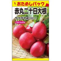 ニチノウのタネ 赤丸二十日大根(おためしパック) 日本農産種苗 4960599170903 1セット(10袋入)(直送品)