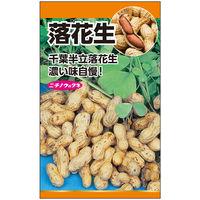 ニチノウのタネ 落花生(ピーナッツ) 日本農産種苗 4960599176202 1セット(5袋入)(直送品)