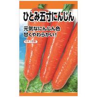 ニチノウのタネ ひとみ五寸(ニンジン) 日本農産種苗 4960599178701 1セット(3袋入)(直送品)