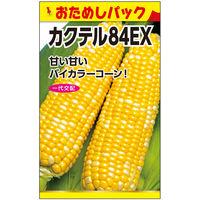 ニチノウのタネ カクテル84EX(おためしパック) 日本農産種苗 4960599181503 1セット(5袋入)(直送品)