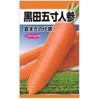 ニチノウのタネ 黒田五寸人参 日本農産種苗 4960599215802 1セット(5袋入)(直送品)