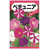 ニチノウのタネ ペチュニア 日本農産種苗 4960599412584 1セット(5袋入)(直送品)