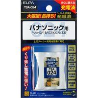 朝日電器 大容量長持ち充電池 TSA-024(直送品)