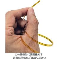 アズワン リボン型温度センサ Y端子(M3)付 200mm RB-K-200-1-Y 1個 3-8540-02 (直送品)