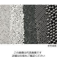 アズワン ビーズ式粉砕機 ステンレスビーズ(φ3mm) 1kg 4-461-18(直送品)