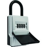 日本ロックサービス ABUS カギの預かり箱mini DS-KB-2M 1個 114-7799(直送品)